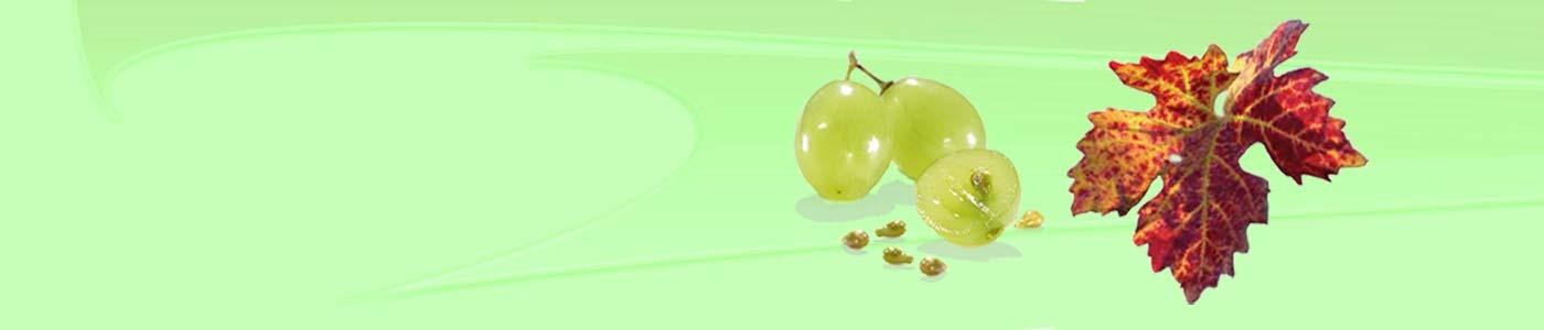 VinoBeauty Traubenkern Kosmetik